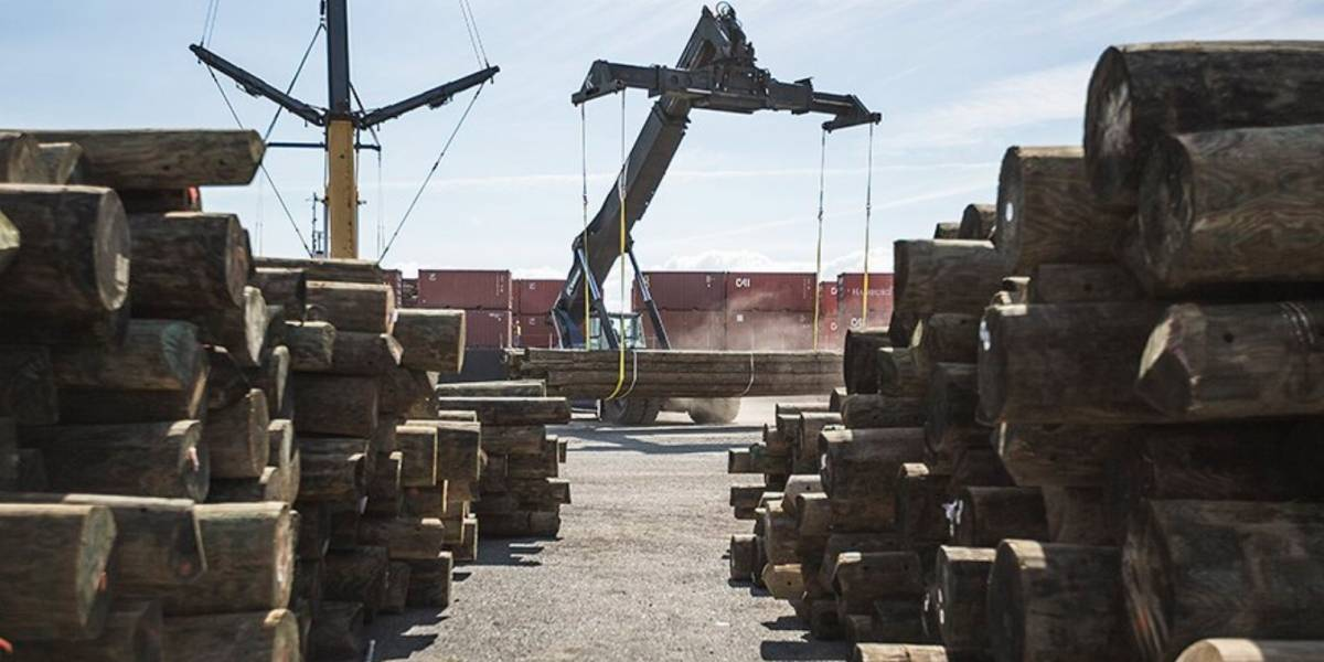 Llega a la isla barcaza de Baltimore con más de mil postes