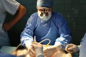 trasplantecruzadorinonigss4-ece655ee9e1381f279477d1a29cd1c4b.jpg