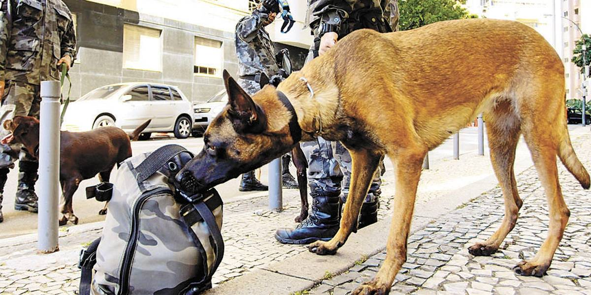Apreensão de drogas bate recorde no Rio