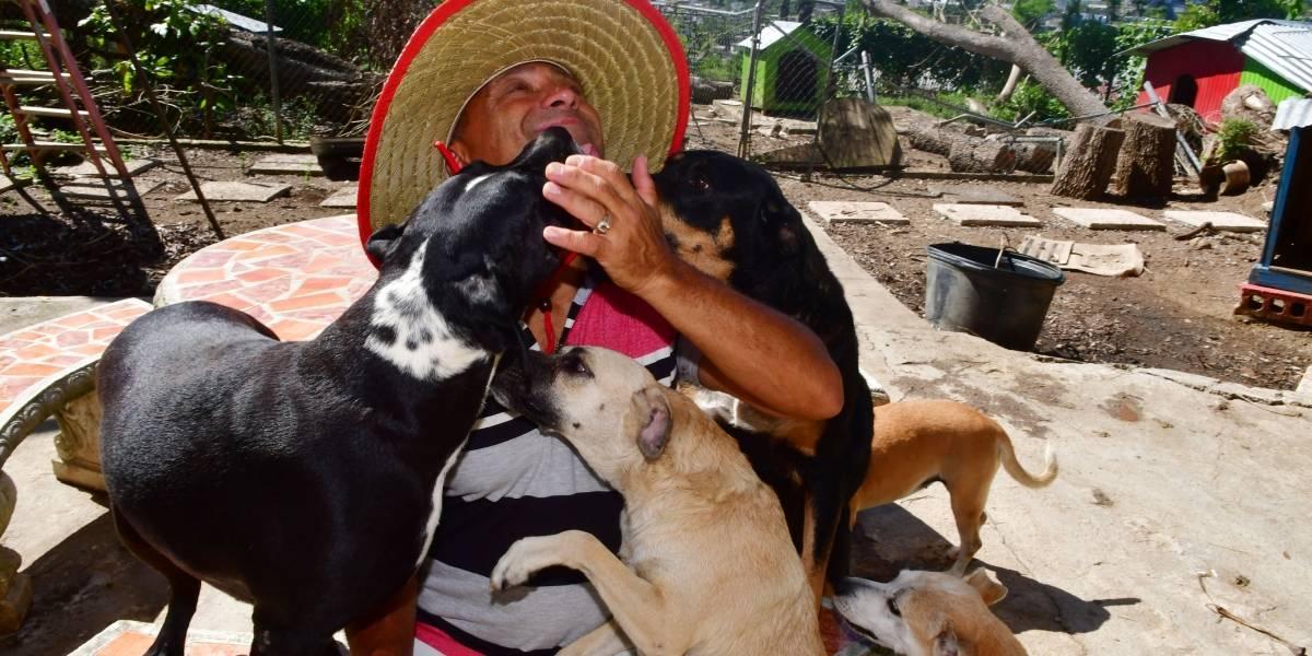 Médico duerme en su auto y cede su hogar a 290 mascotas