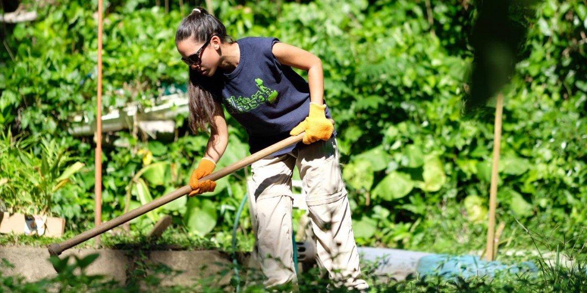 Crearán espacios para empoderar las comunidades durante emergencias