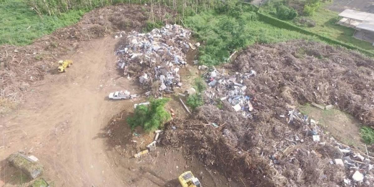 Avanza Vega Alta en recogido de escombros tras María