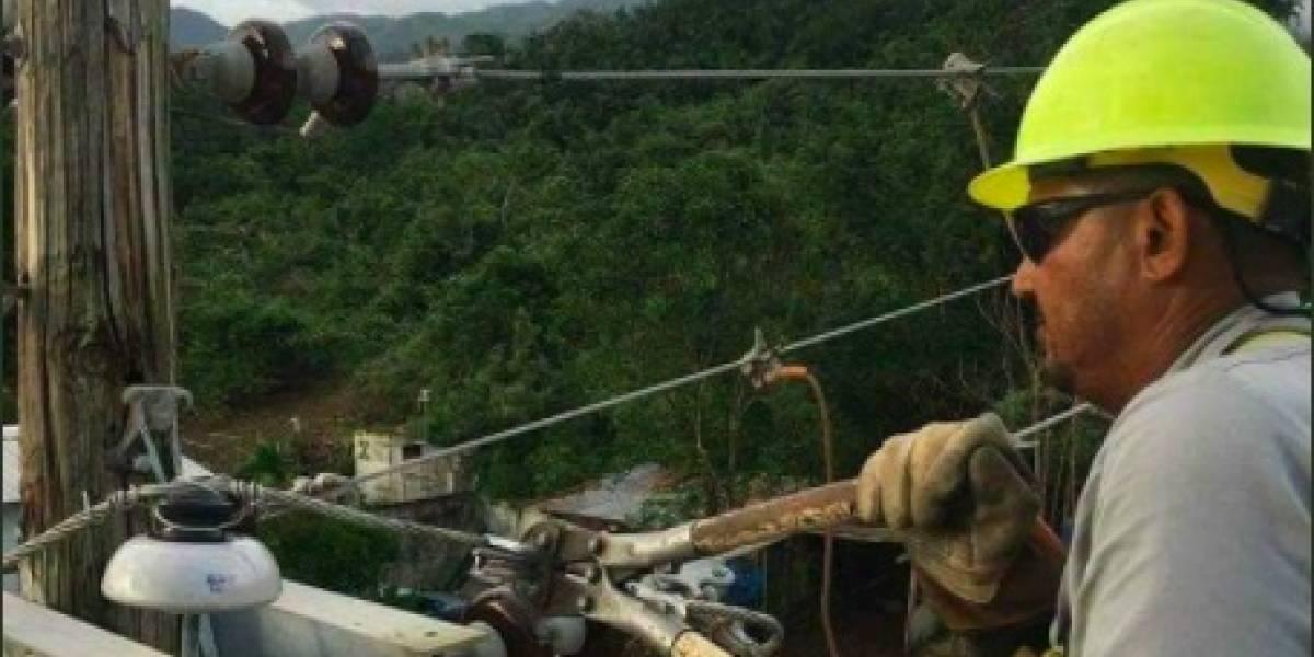¿Cómo la AEE restablece la luz en Puerto Rico?