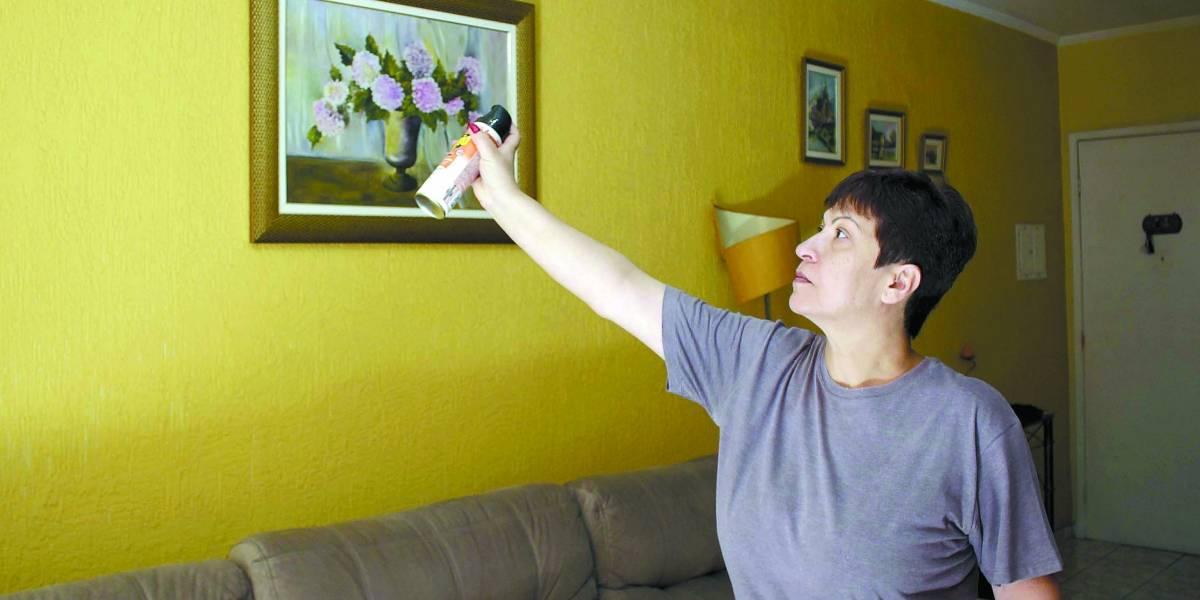 Moradores de São Bernardo enfrentam infestação de pernilongos há ao menos três anos
