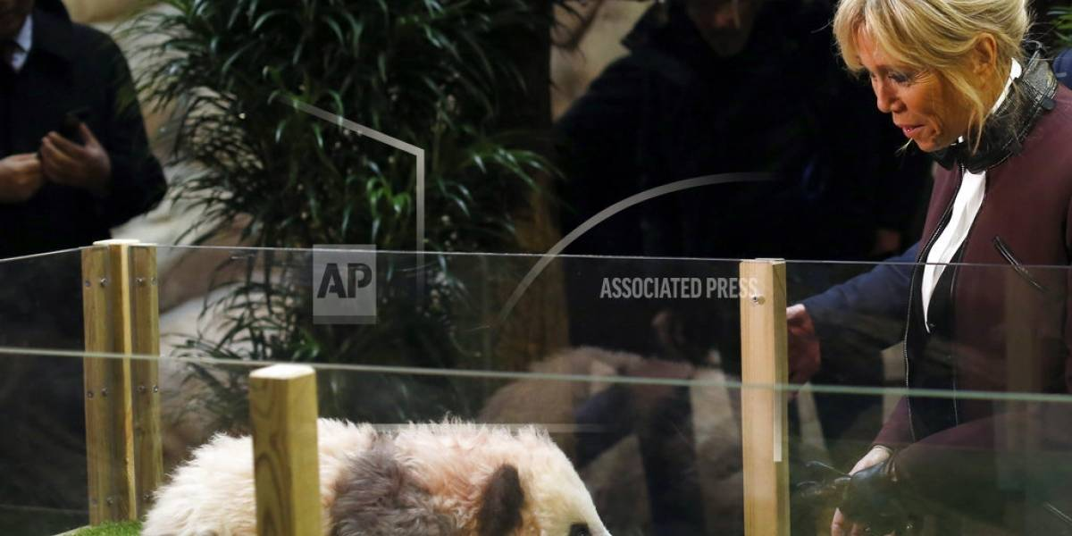 El primer bebé panda en Francia tiene nombre: Yuan Meng