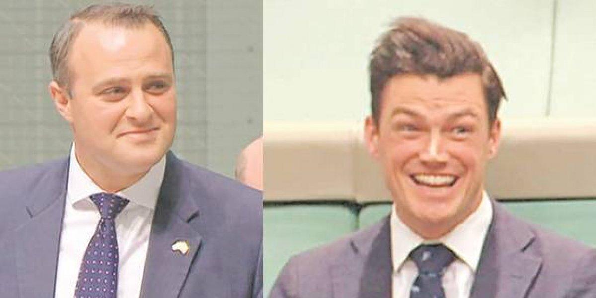 Diputado australiano propuso matrimonio a su novio en el Parlamento