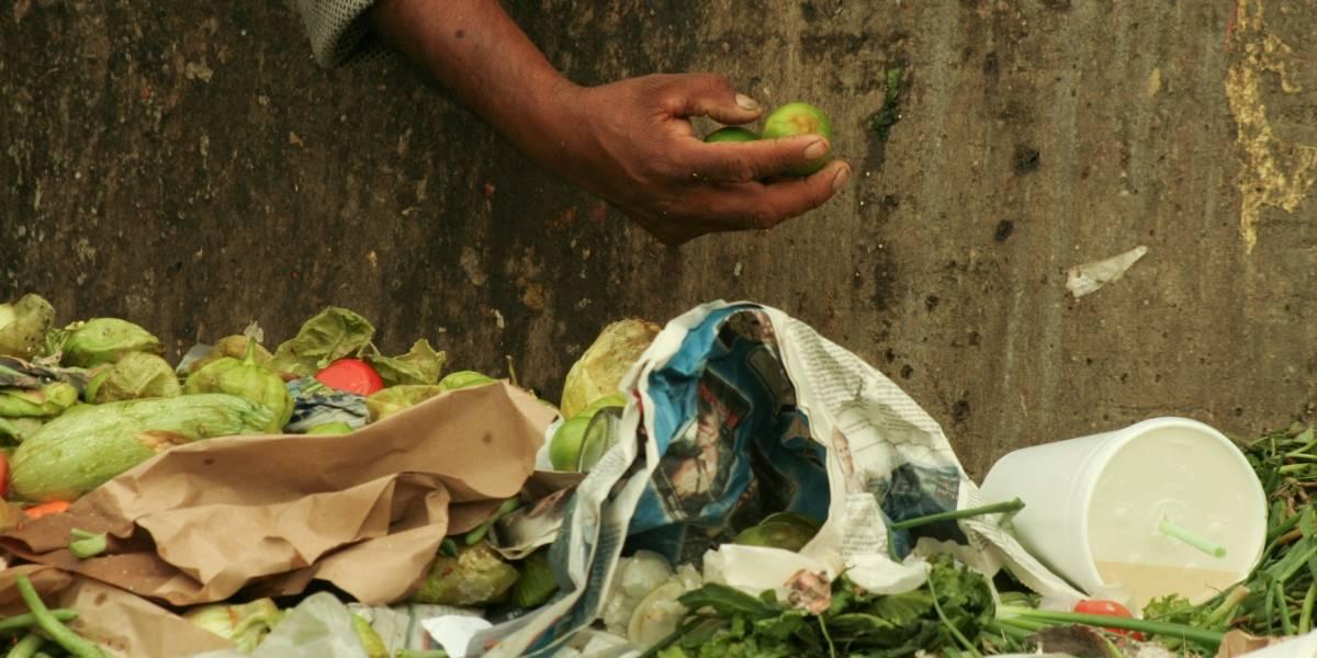 México desperdicia casi el 35% del alimento que produce al año
