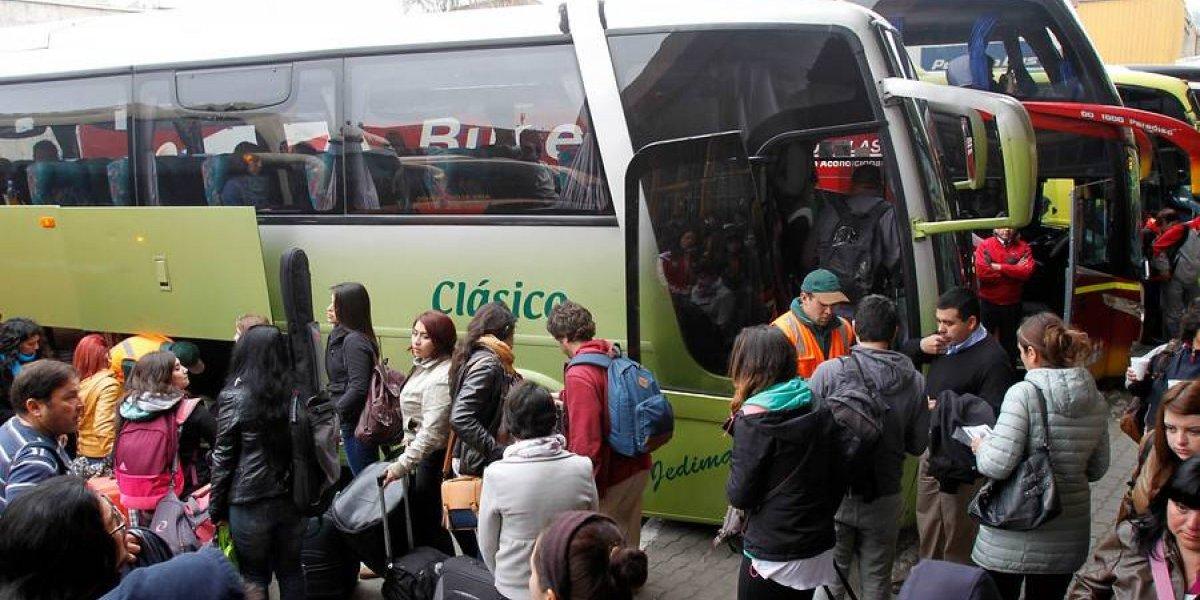 Prepare su bolsillo si sale este fin de semana largo: detectan diferencias de hasta 227% en pasajes de buses