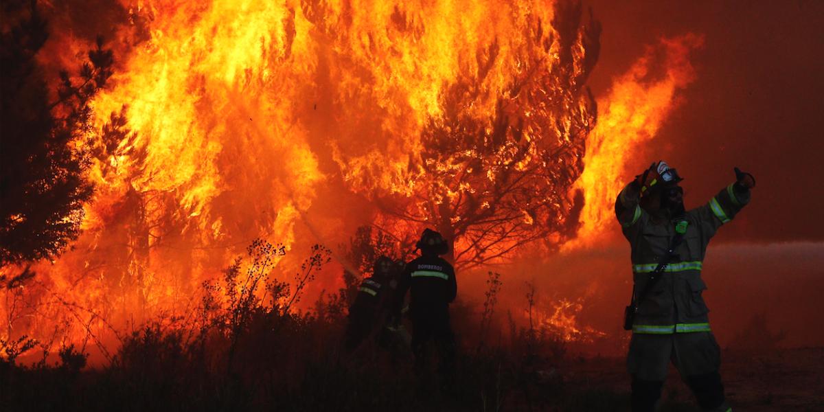 Alerta Roja por incendio forestal en Melipilla