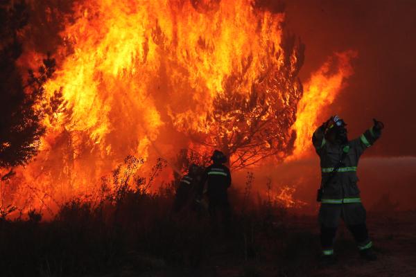 La actual ola de calor favorece que se desencadenen incendios forestales