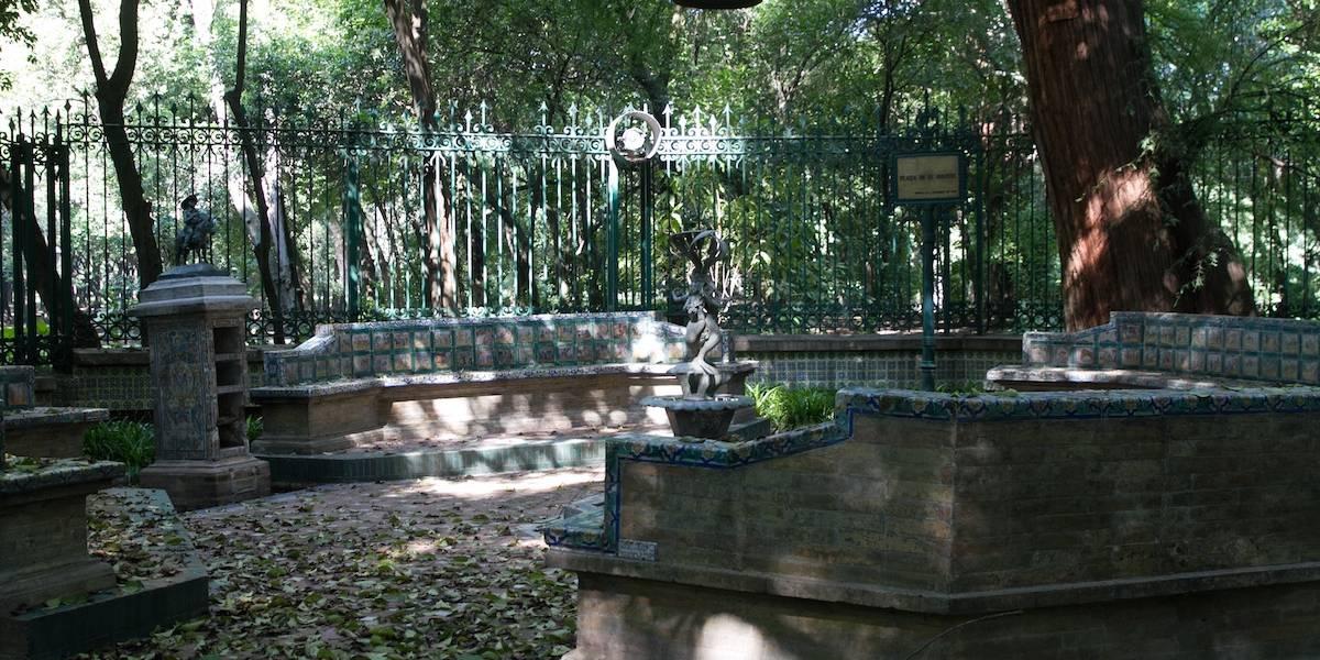 Hallan feto en contenedor de basura del Bosque de Chapultepec