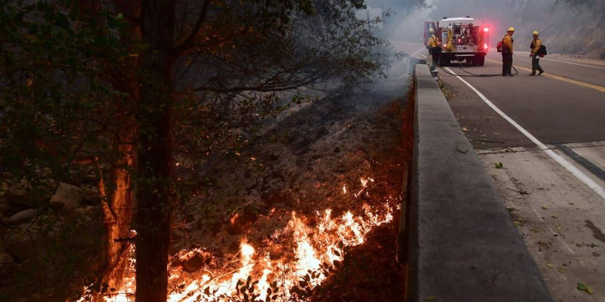 Jornalista brasileira que mora há 30 anos em LA conta como é viver em alerta constante de incêndios e terremotos