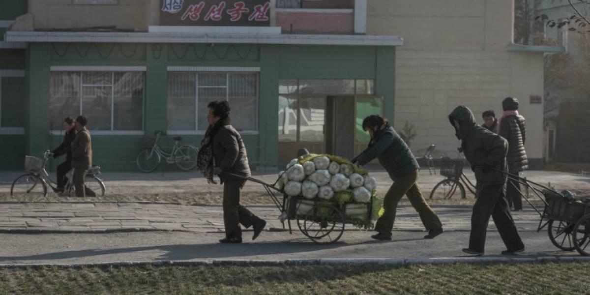 Jefe de DDHH de ONU: Sanciones contra Corea del Norte afectan entrega de ayuda humanitaria