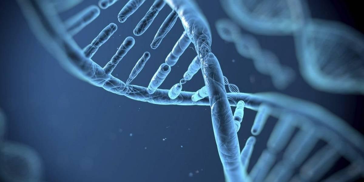 Técnica que altera DNA vira esperança no combate a doenças genéticas