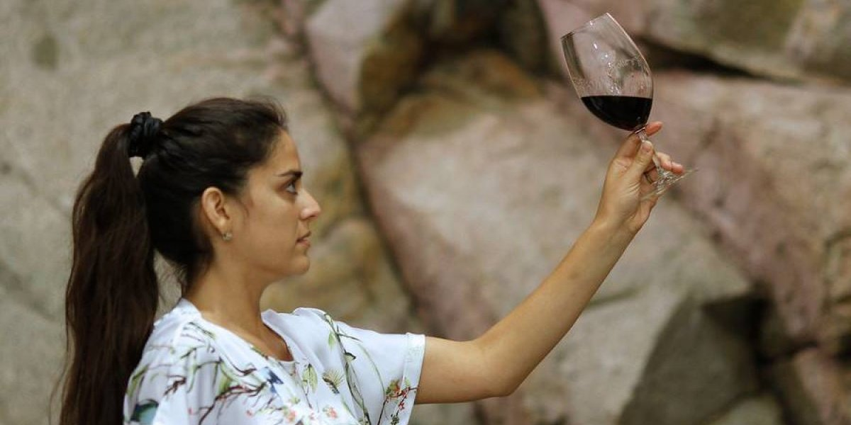 Vinos chilenos deleitan paladares en todo el mundo