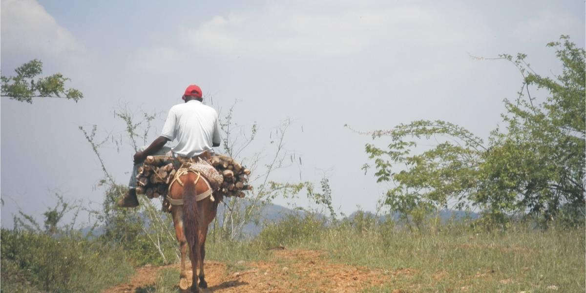 Tierras de afros peligran en manos del Gobierno