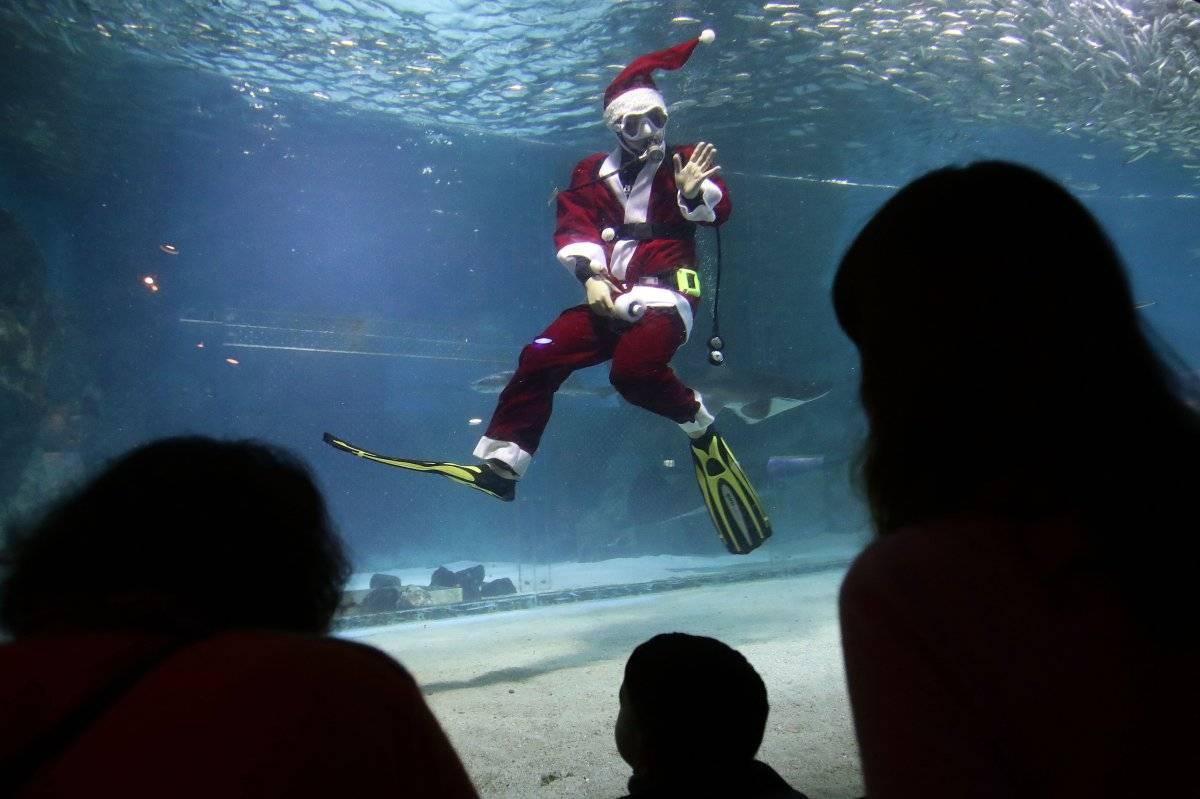 Santa Claus buzo