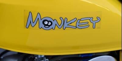 skyteammonkey022-3e93c383c8c0c4f913b51043d4a976a4.jpg