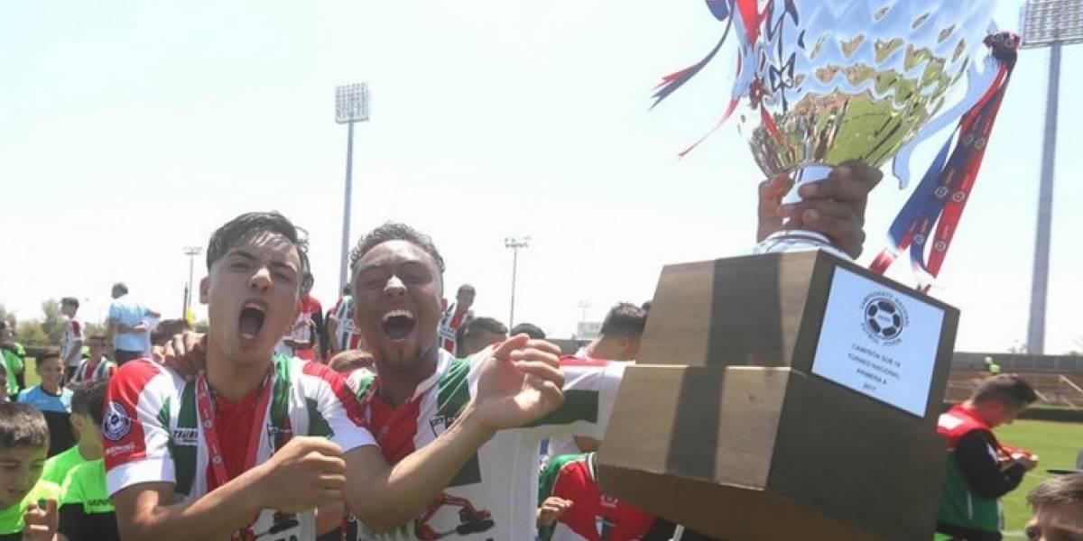 Palestino y Colo Colo pelearán por representar a Chile en la Libertadores sub-20