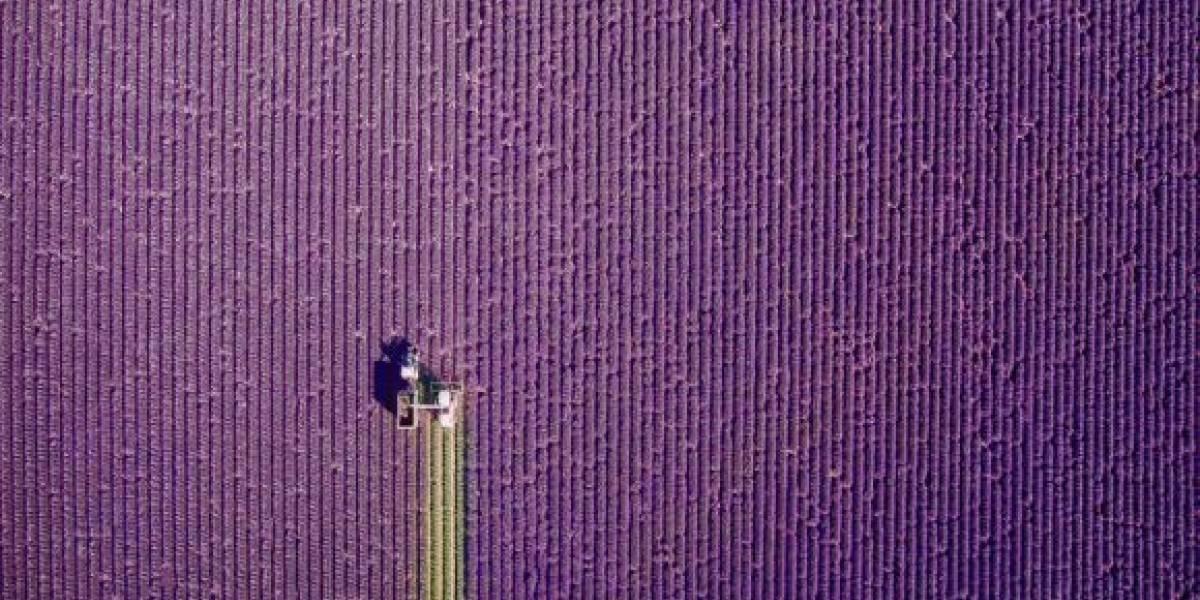 Seleccionan las mejores fotografías del año captadas con drones