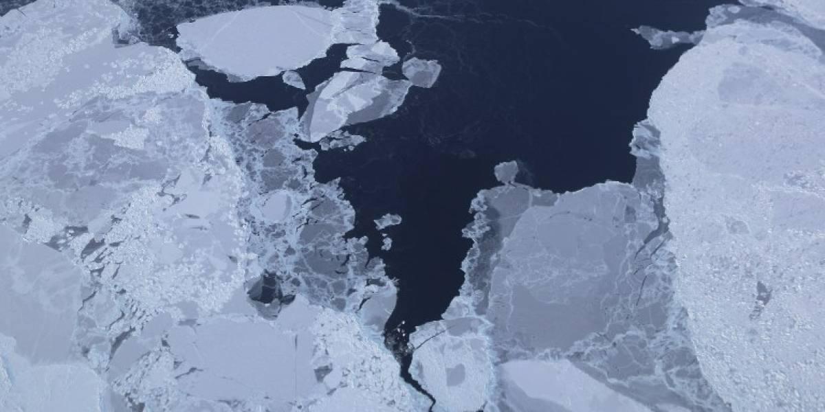 """Se descongela """"el refrigerador del planeta"""": alarmante informe sobre derretimiento del hielo del Ártico"""