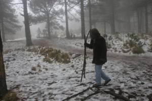 https://www.publimetro.com.mx/mx/puebla/2017/12/12/tlaxcala-las-temperaturas-mas-bajas-del-ano.html
