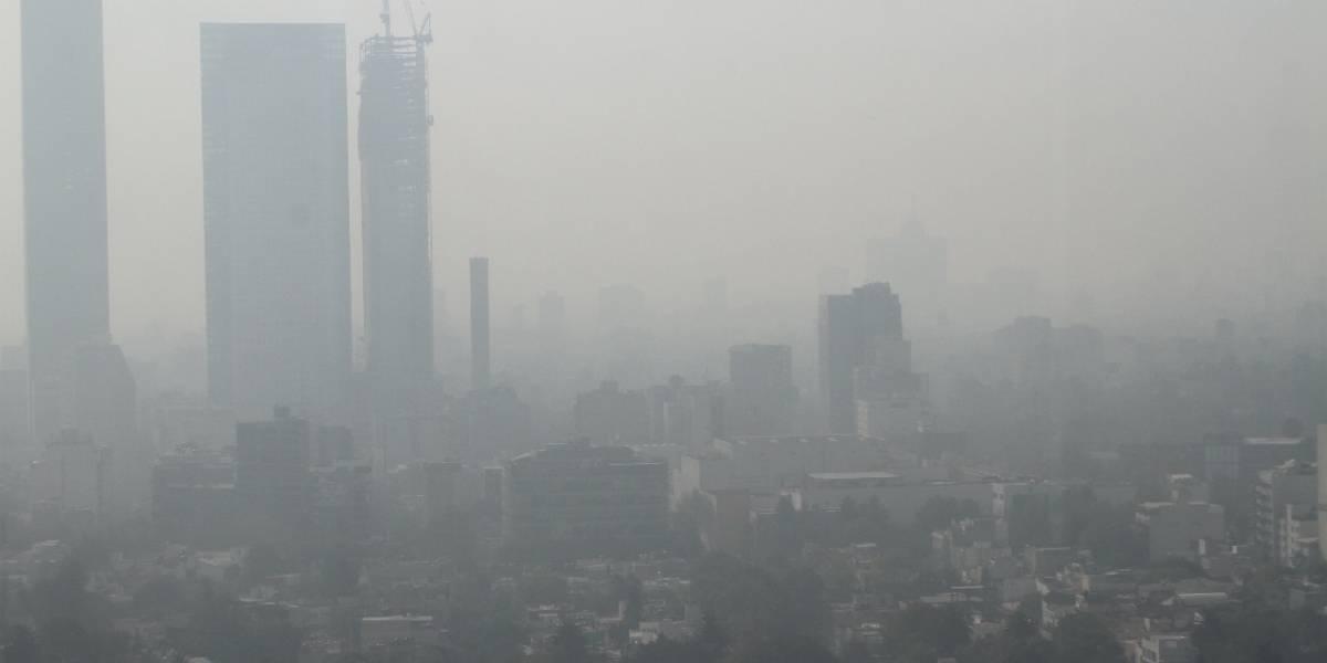 Así daña tu salud la contaminación por partículas y esto debes hacer al respecto