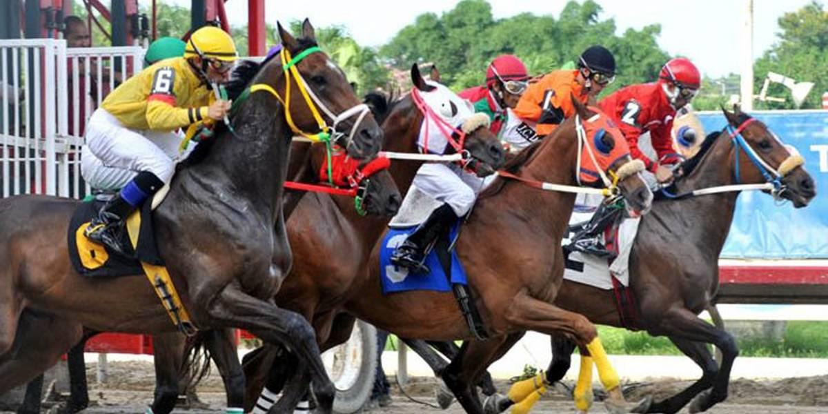 Hipódromo Camarero reanuda carreras