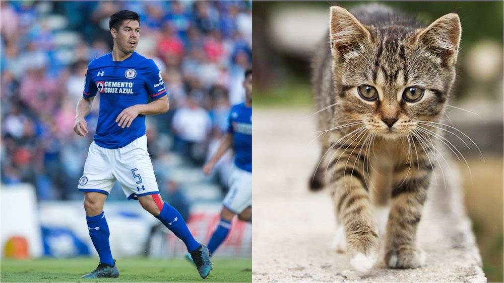 "Francisco ""Gato"" Silva, Cruz Azul"