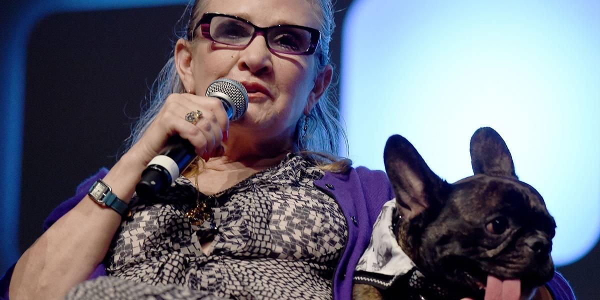 Cachorro de Carrie Fisher assiste a Star Wars e reconhece dona