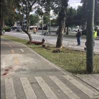 Accidente de tránsito en la REFORMA