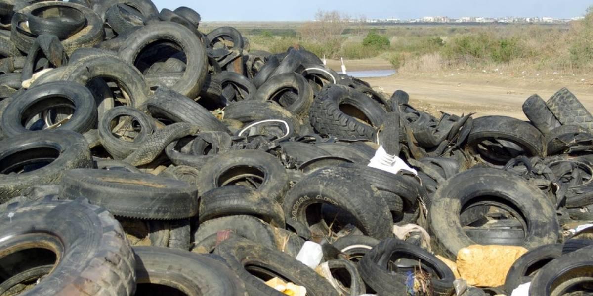 JCA aprueba nueva tarifa temporera para exportación de neumáticos