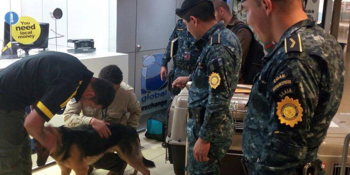 PNC recibe aporte de perros y equipo blindado por parte de EE. UU.