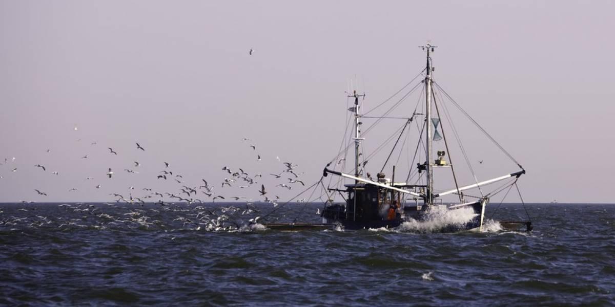 Tensión entre Ecuador y China por gigantesca flota pesquera asiática: Quito pide ayuda a Chile, Perú, Colombia y Panamá