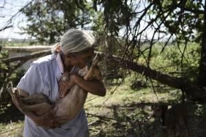 En esta imagen del 15 de diciembre de 2017, Carmen Cintrón, fundadora del Canita Sanctuary que protege a animales abandonados de la eutanasia, tiene un gesto de cariño con uno de sus perros rescatados en Guayama, Puerto Rico.