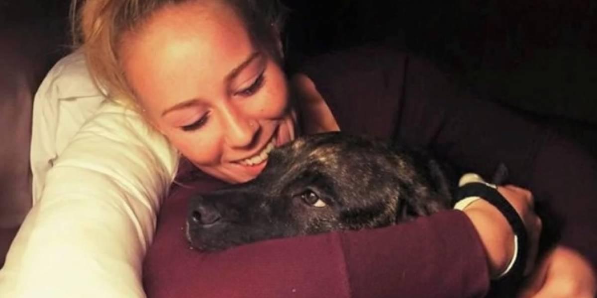 Policía reveló nueva teoría: los tenebrosos detalles tras la muerte de la mujer que fue devorada viva por sus perros