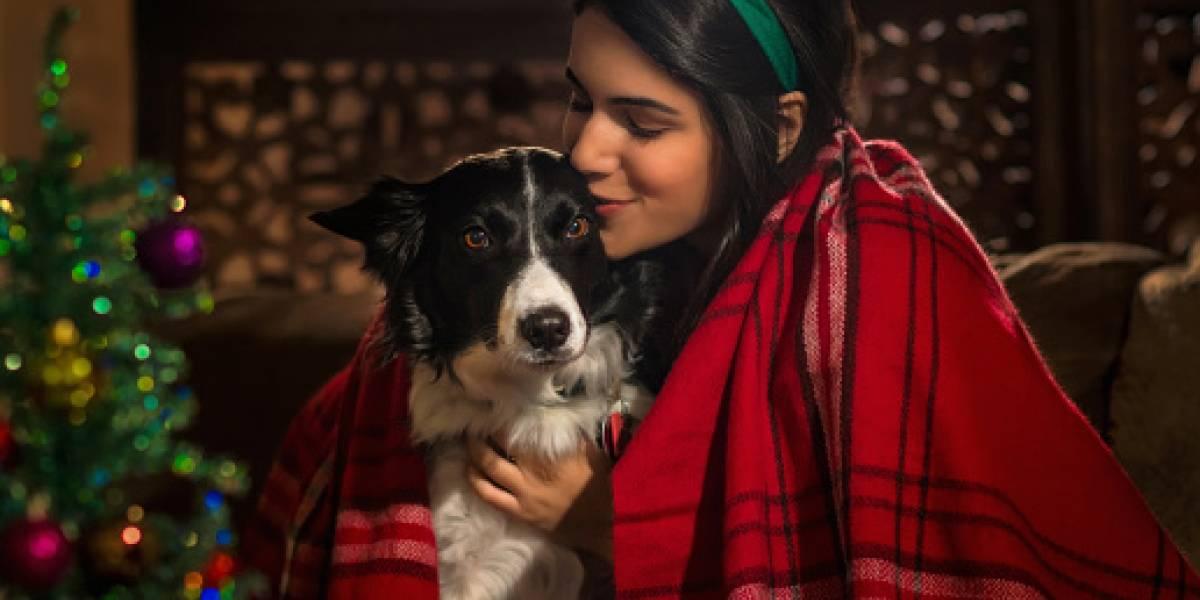 Besar a los perros podría ser un riesgo para la salud, según científico