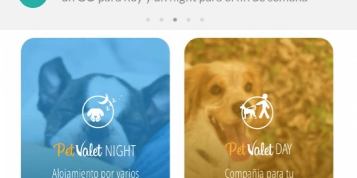 Pet Valet: la mejor opción para el cuidado de su mascota estas vacaciones