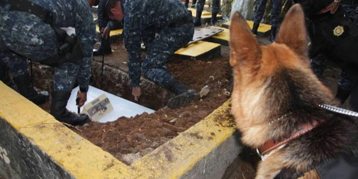 """VIDEO. PNC realiza honras fúnebres al agente canino """"Rambo"""""""