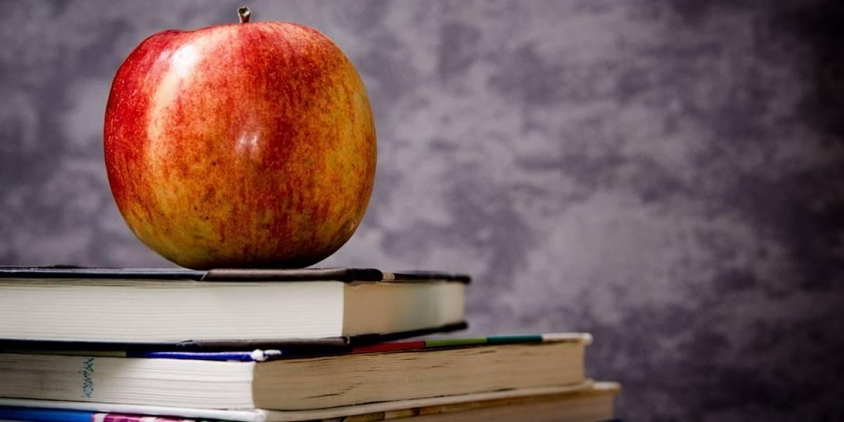 Inglês e currículo diversificado estão entre as apostas das escolas para 2018