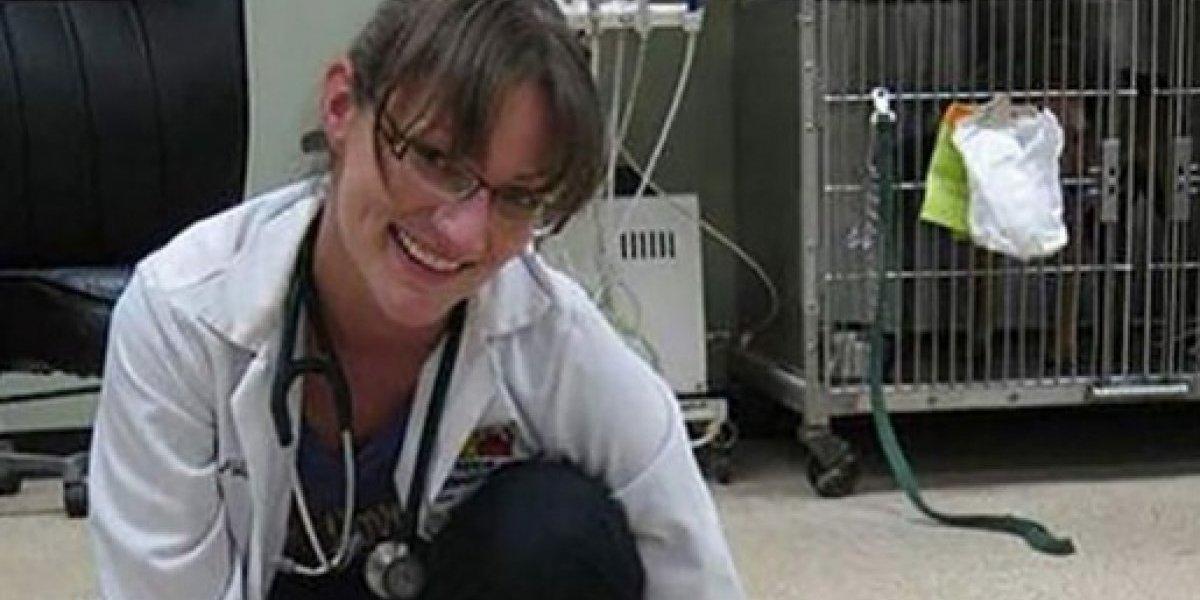 Veterinaria del horror: mujer disparó en la cabeza a perro de su vecino porque no paraba de ladrar