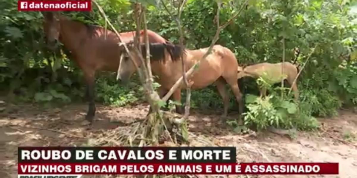 Homem é morto por causa de cavalo em Osasco