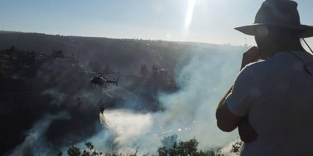 Onemi declara Alerta Roja en Valparaíso por incendios en Limache: llamas ya redujeron una casa a cenizas