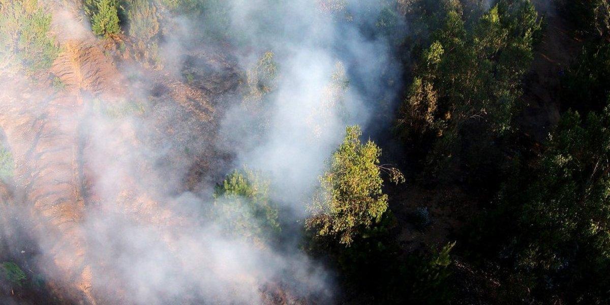 Incendio forestal amenaza a viviendas en la comuna de Limache, Valpo