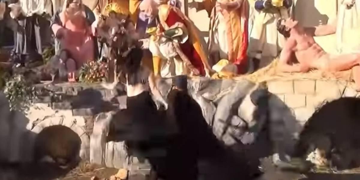 Video: feminista semidesnuda trata de llevarse al niño Jesús del pesebre del Vaticano