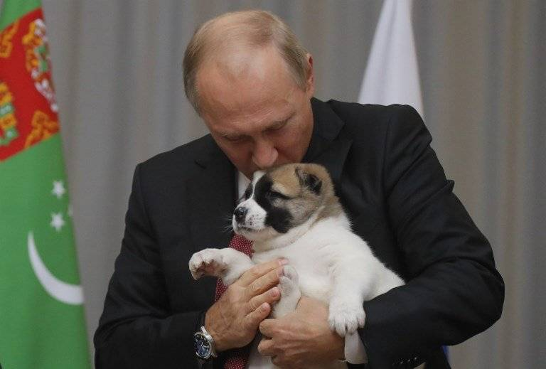 Vladimir Putin con un perro