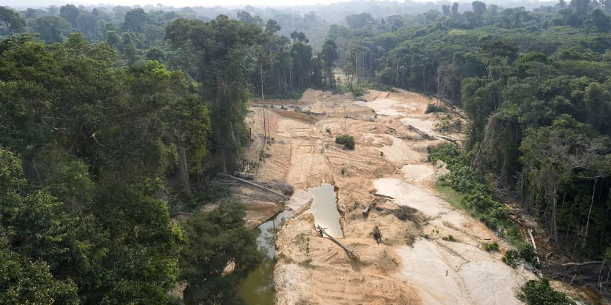 Esta es la principal amenaza para la Amazonía, según coinciden expertos