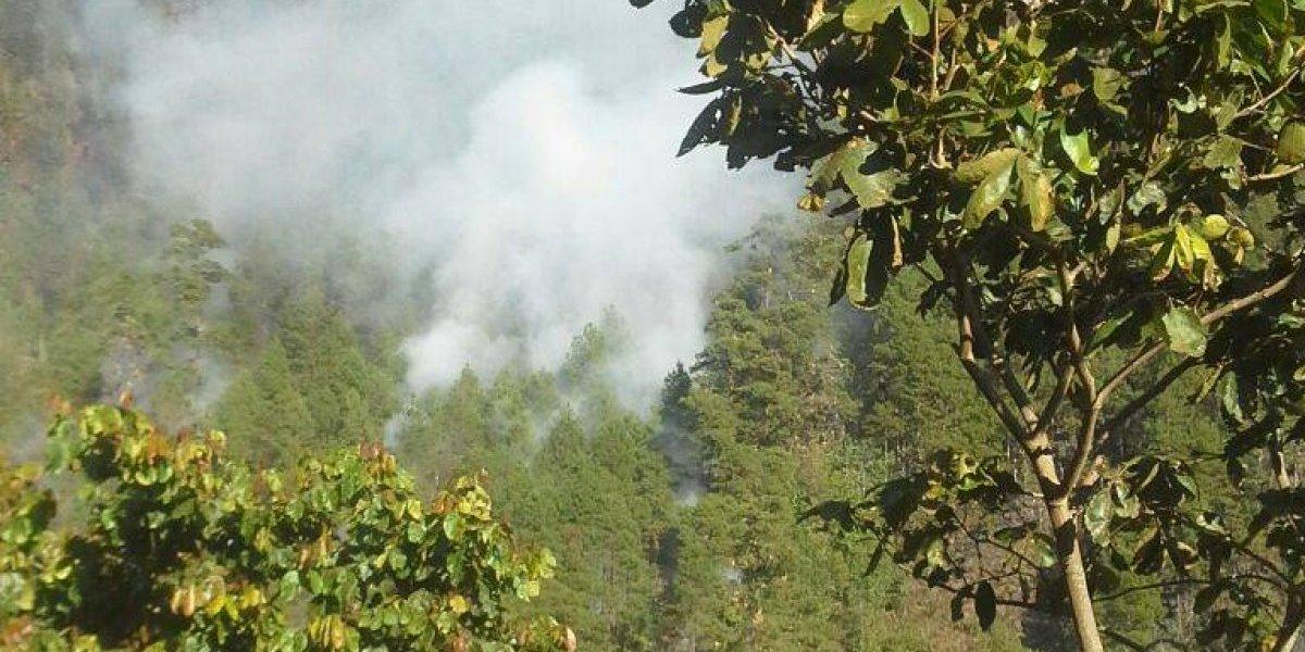 Bomberos reportan más de 20 incendios forestales en las últimas 48 horas