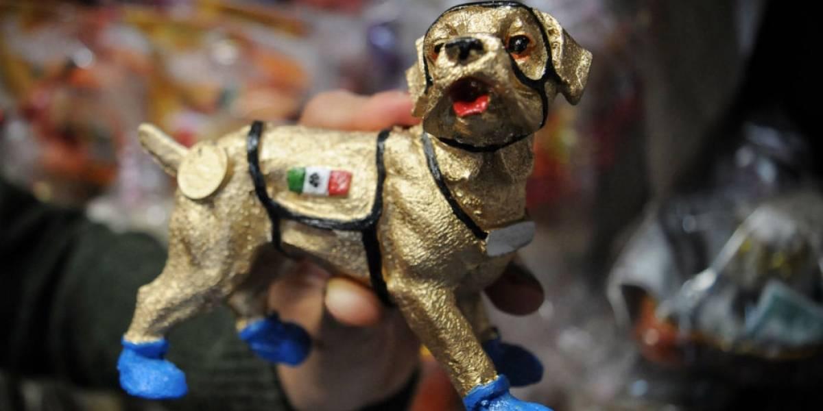 Frida, el amuleto contra sismos que todos los capitalinos querrán