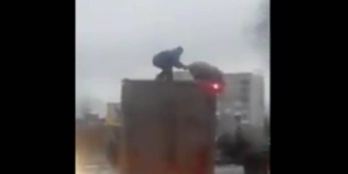 Video: Épico 'combate' entre un hombre y un cerdo sobre el techo de un camión